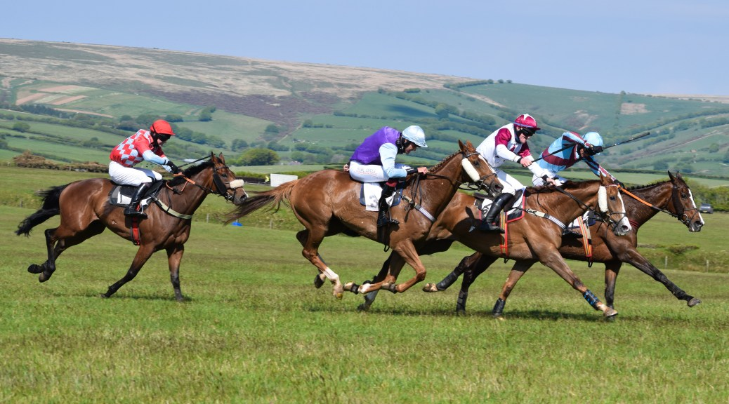 Conditions (Division 1) winners Bridge Of Spies (centre, blue and purple silks) and Where's Wilma (far side, blue and maroon silks) who couldn't be split at the line, with the judge declaring a dead-heat verdict