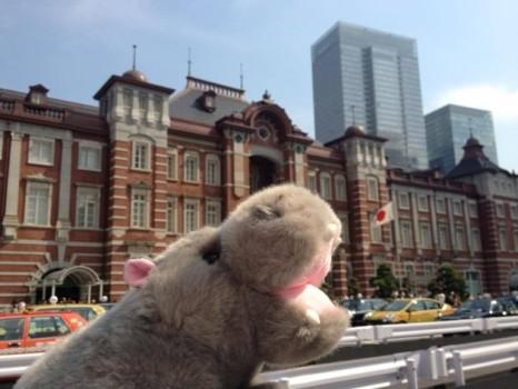 Stuffed Animal Tokyo Station
