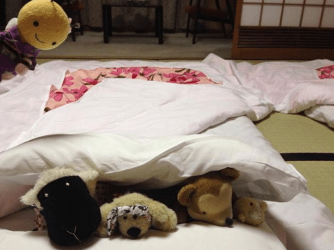 Stuffed Animals5