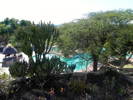 Elephant Hills Hotel Victoria Falls Zimbabwe07