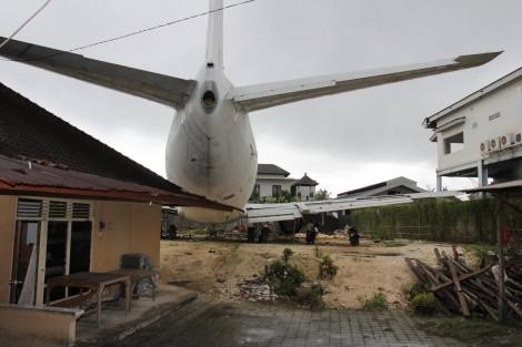 Bali Plane Backyard