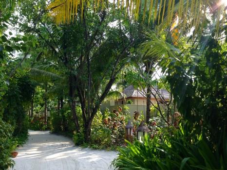 Conrad Maldives Rangali Island Trip Report088