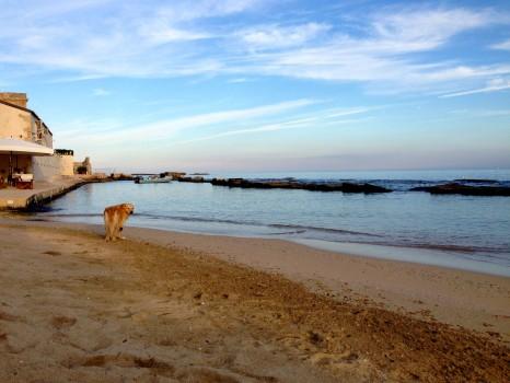 Musciara Siracusa Resort Sicily Syracuse089
