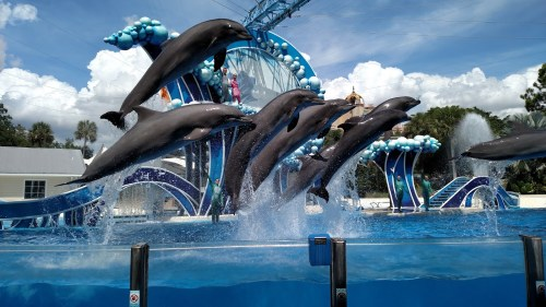 seaworld-tickets
