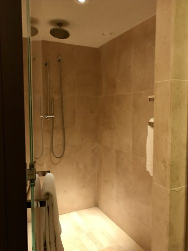 Conrad New York Deluxe Suite - Shower