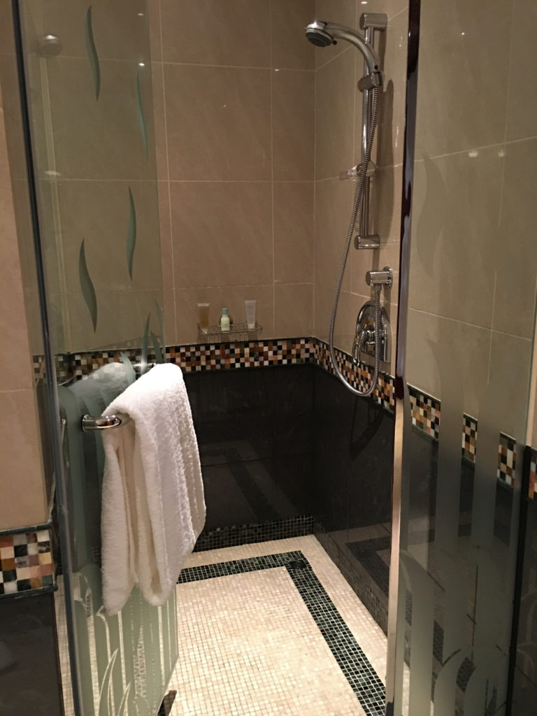 Grand Hyatt Dubai Grand King Room - Shower