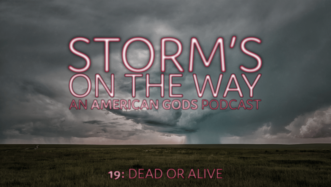 Storm's On The Way 19: Dead Or Alive