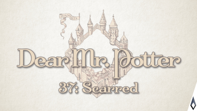 Dear Mr. Potter 37: Scarred