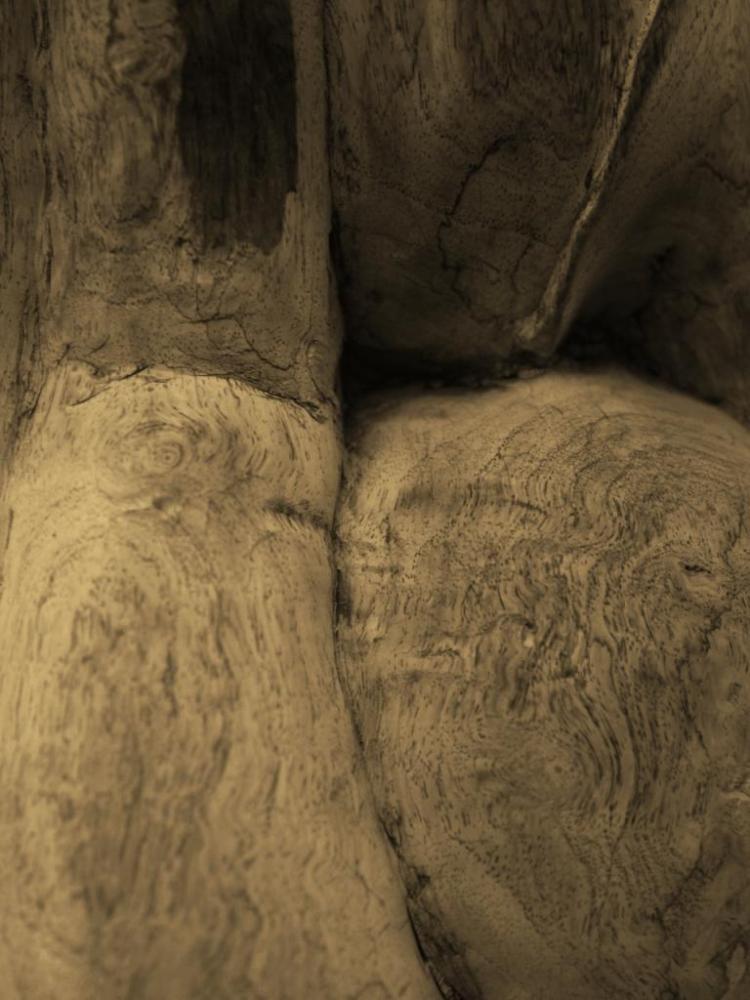 Mourning wood... (6/6)