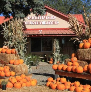 Mortimer Farms Pumpkin Festival