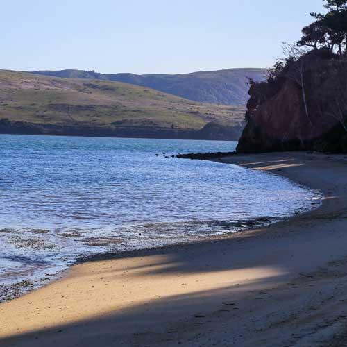 point reyes beaches