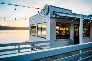 Things to do in Point Reyes at night