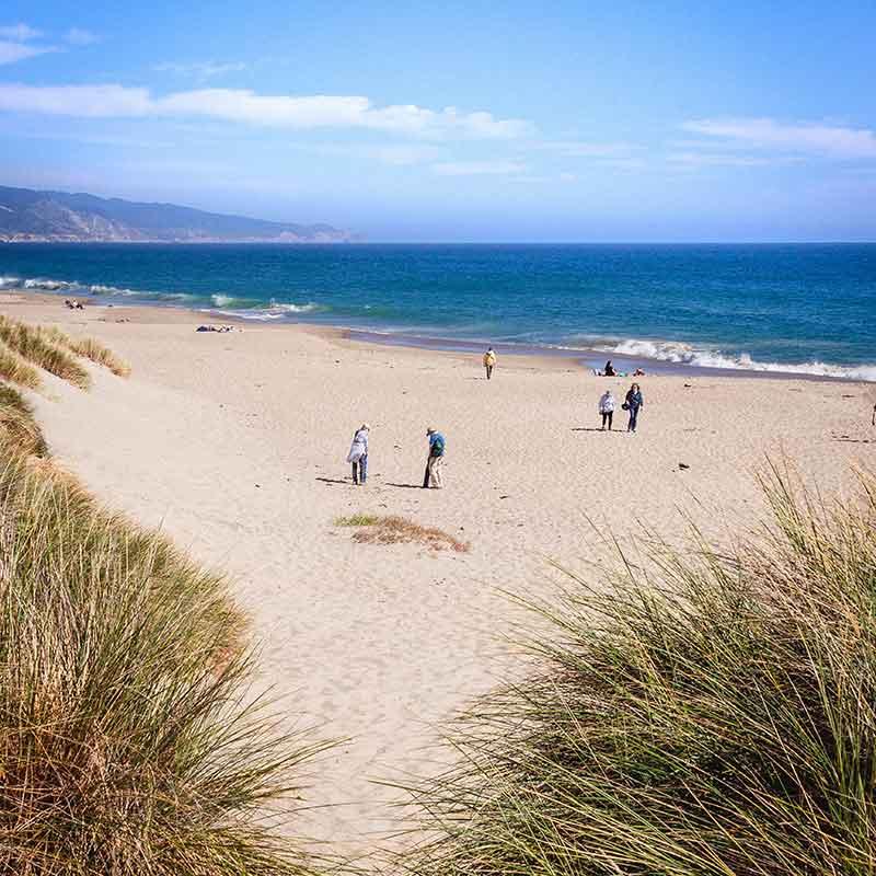 limantour beach point reyes national seashore