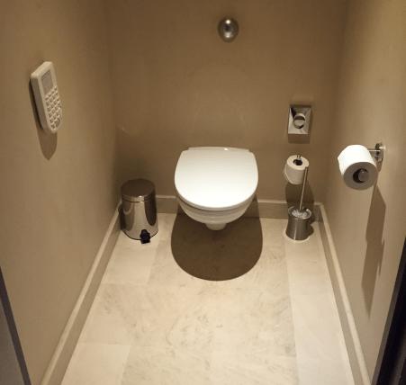 hyatt_nice toilet