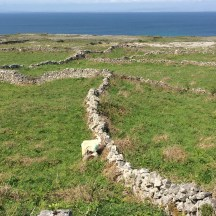 Walls of Inishmore
