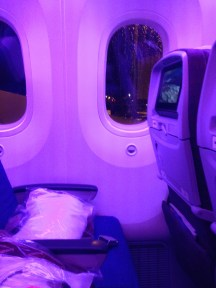 Row 19 on the LAN 787... small pitch