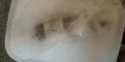 Frozen bottle of Diet Coke