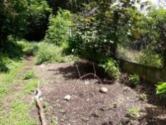 Jardin partagé du Coutil