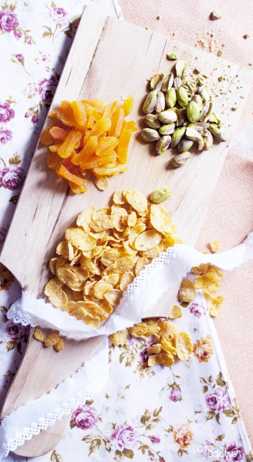 rose_des_sables_chocolat_blanc_poiretcactus.com5