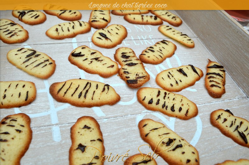 LANGUES_DE_CHAT_TIGREES