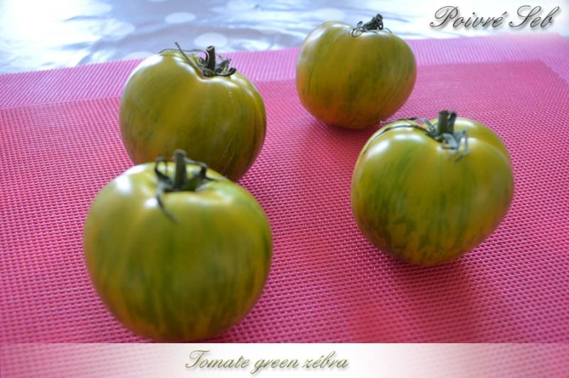 Tomate_green_zebra
