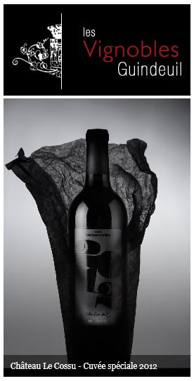 Logo - Les Vignoble de Guindeuil - Officiel