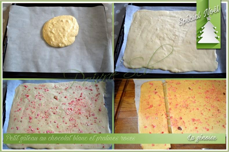 Petit gâteau au chocolat blanc et pralines roses_Génoise