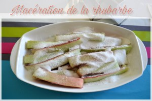 Macération de la rhubarbe
