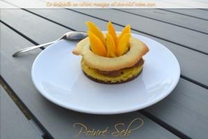 Tartelette au citron, mangue et chocolat