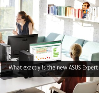 What exactly is the new ASUS Expert Series? 30