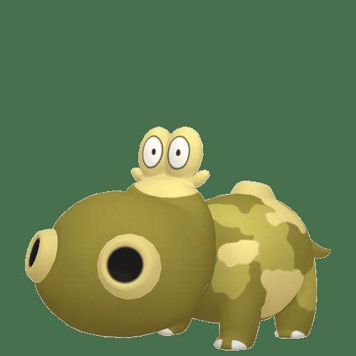Hippopotas Femelle Chromatique