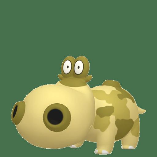 Hippopotas Mâle Chromatique