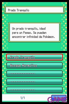 Pokemon Oro  HeartGold y Plata SoulSilver