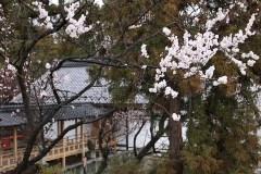 120414-02-上田城跡公園-16