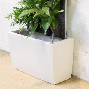 Box technique blanc pour mur végétal