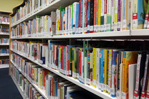 Image of books on shelves in the Library