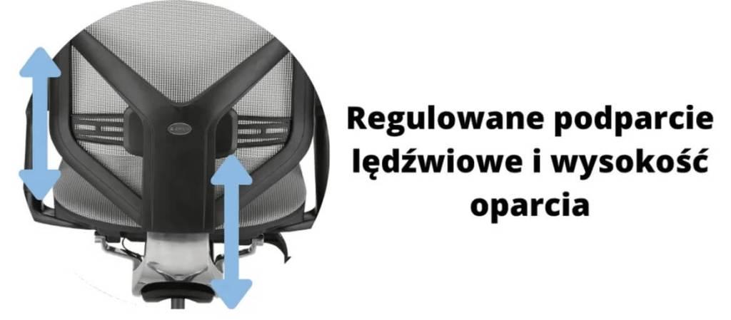 Wygodny fotel ergonomiczny biurowy Zhuo Insight