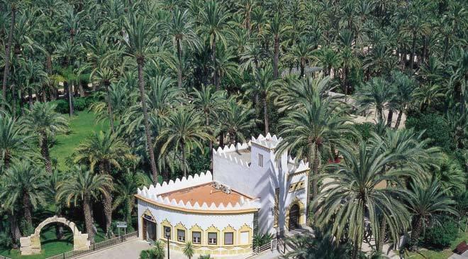 Co zwiedzić w Alicante - Park Elche Palmeral