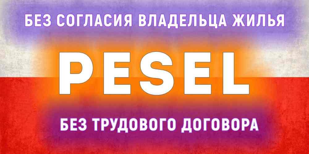 poluchenie-pesel-bez-soglasija-vladelca-zhilja-bez-trudovogo-dogovora