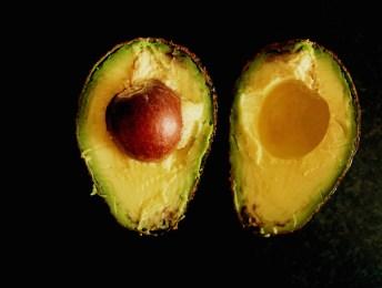 avocado // avokado