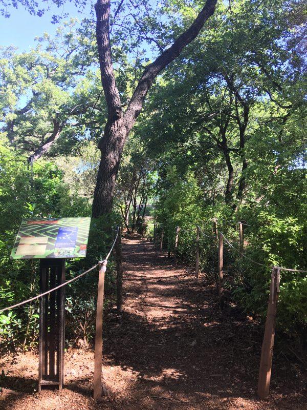 Jardins - Labyrinthe