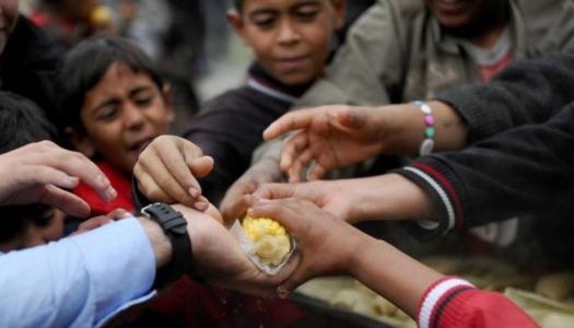 El hambre en el mundo: más de 113 millones en situación crítica