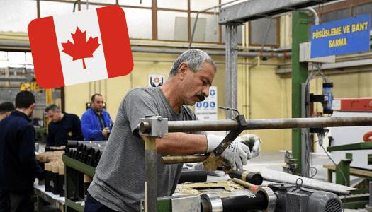 ¿Quieres trabajar en Canadá? ¡Ésta es tu oportunidad!