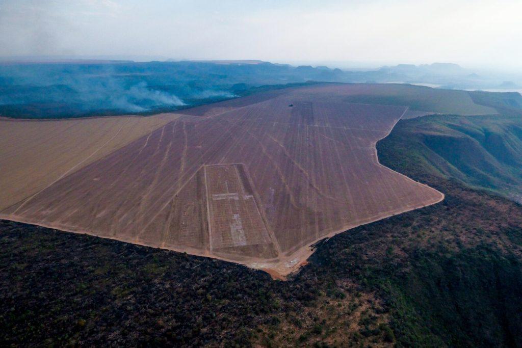 Οι εταιρείες πίσω από τις πυρκαγιές του Αμαζονίου - Κατιούσα