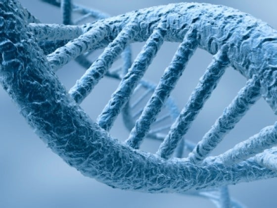 FNAEG fichier national automatise des empreintes genetiques