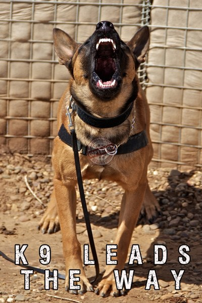 police k9 posters