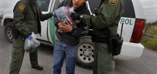Border Patrol Agents Apprehend an Immigrant