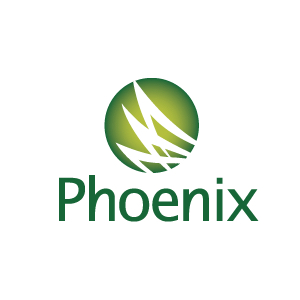 Phoenix Case Study: Benefit and Budgeting Calculator