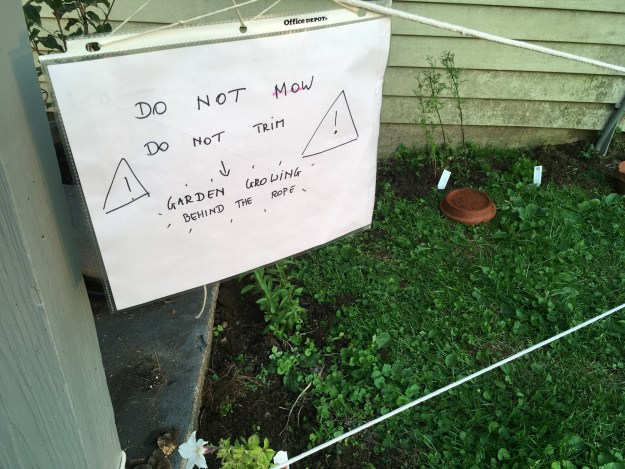 Handwritten sign to keep gardening crew out of newly planted area
