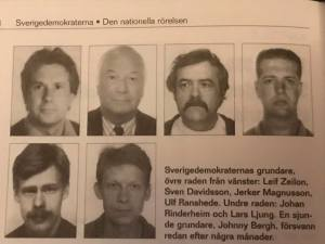 Det började bra Sverigedemokraterna